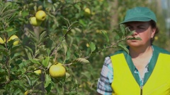 Agronomist checks the state of apple trees Stock Footage