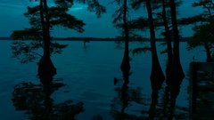 Beautiful Night Shot of Reelfoot Lake in Tennessee Stock Footage