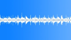 REGGAE-carribean holiday loop-120bpm (0 16) Stock Music