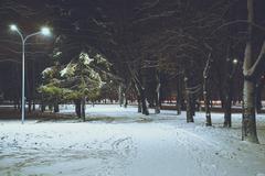 Night at winter city park Stock Photos
