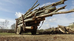 Deforestation, tractor loaded with tree logs Stock Footage