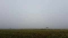 Time lapse fog in the rice field in the morning, thailand Stock Footage