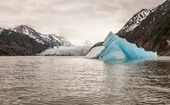 Grewingk Glacier, Lake Trail, Kachemak Bay, Alaska, USA Stock Photos