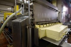 Finished dairy product at production line Stock Photos