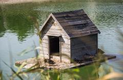Duck house at the pond Stock Photos