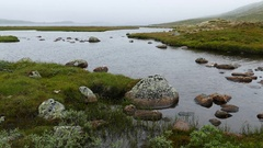 Lake with stone and mist Stock Footage