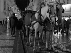 Horse carriage in the old town of Prague during Advent at Night Stock Footage