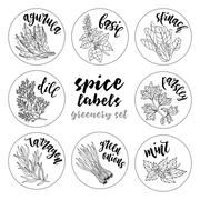 Spices herbs labels. Contour vector greenery set Stock Illustration
