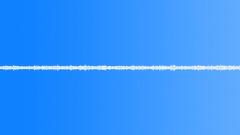 Water Stream Hollow Forest - Short Loop Sound Effect