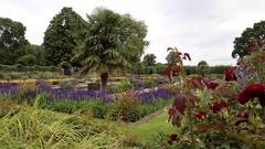 The Sunken Garden, Kensington Palace, London, UK 1 Stock Footage