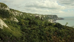 Folkestone Warren and cliffs Stock Footage