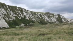 Samphire Hoe cliffs Stock Footage