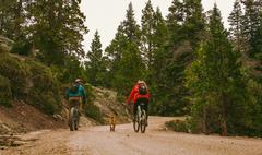 Pet dog running alongside cyclists, Sequoia National Park, California, USA Stock Photos