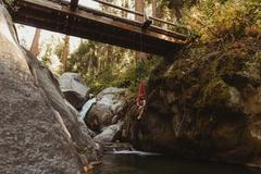 Young man sitting in hammock, suspended from bridge, Mineral King, Sequoia Stock Photos