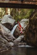 Young man jumping from hammock, suspended from bridge, Mineral King, Sequoia Stock Photos