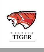Tiger. Roaring Predator. Roaring Tiger. Elegant tiger head combine with text. Stock Illustration