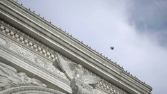 Pigeon flying to Washington Square Park arch - rotating close-up shot bird Stock Footage