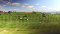 New Zealand Rolling Countryside Rural Landscape In Waikato Region Driving POV 4K Stock Footage