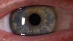 Blue Eye Macro Stock Footage