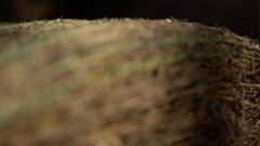 Hay bale rock.  Stock Footage