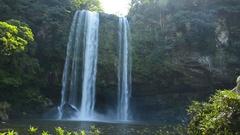 Chiapas Mexico Jungle Waterfall Stock Footage