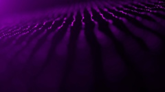 Pink or Purple Particle Ribbon Lines with Depth of Field Motion Background Stock Footage