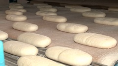 The dough in the form of bread moving along the conveyor Stock Footage