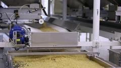 Automatic macaroni production Stock Footage