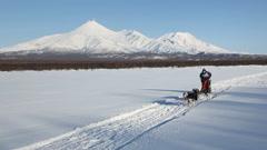 Sled dog racing on background of Kamchatka volcanoes Stock Footage