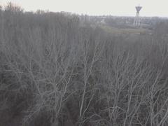Establishing aerial shot of creepy winter forest. Stock Footage