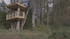 Moving Shot of Bear Viewing Platform in a Forest Stock Footage