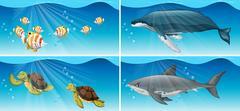 Underwater scenes with sea animals Stock Illustration