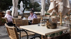 Valletta, Malta - cat lying on street cafe table and people sit rest and drink Stock Footage