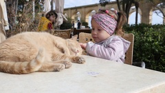 Valletta, Malta - Child girl eat and cat lying on street cafe table Stock Footage