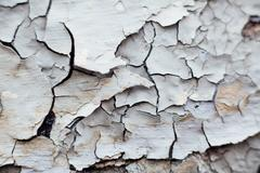 Close Up texture of Chipped White peeling paint, covered with cr Stock Photos