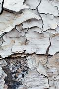 Close Up texture  of Chipped White peeling paint, covered with c Stock Photos