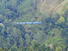 Beautiful panorama of Sri Lanka countryside with train passing tea plantations Stock Footage