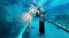 Dubai Mall Aquarium. A woman in its tunnel. Midshot. Stock Footage
