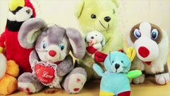 Lot of variety of soft toys of animals Stock Footage