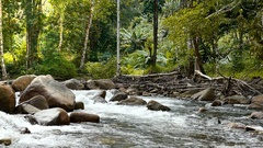 HD footage of Rive with rock in deep forest in Slow motion, South of Thailand Stock Footage