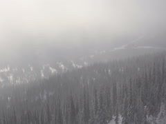 Flying in the fog over winter fores Stock Footage
