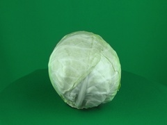 Cabbage Rotating in Green Screen Chroma Key Matte Stock Footage