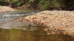 Water from mountain flow down to river Stock Footage