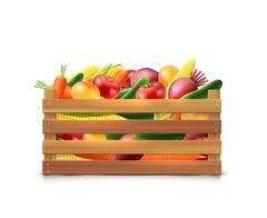 Vegetables Harvest Template Stock Illustration