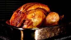 Roast turkey, straight from the oven. Stock Footage