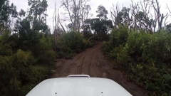 POV 4x4 Vehicle driving through forest on sandy track Stock Footage
