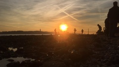 Dog Runs Into Camera In Low Tide River During Sunset  Stock Footage