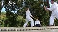 Demonstrations of martial arts at martial arts festival in Feofania park in Kiev HD Footage