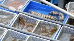 Hong Kong - Selling fish in Sai Kung Hong Kong - lobster Stock Footage