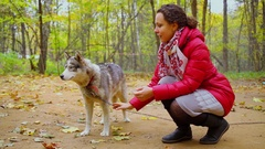 Woman pats husky breed dog on chain at autumn day in forest Stock Footage